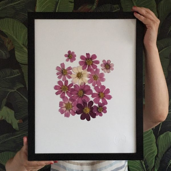 Cosmos Herbarium