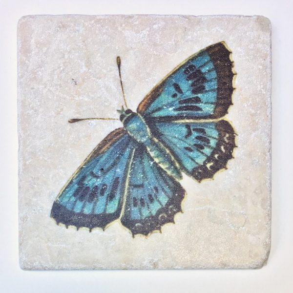 Marmor Schmetterling 3