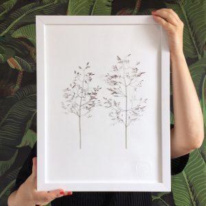 Wiese Herbarium