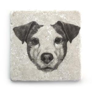 Hund 1